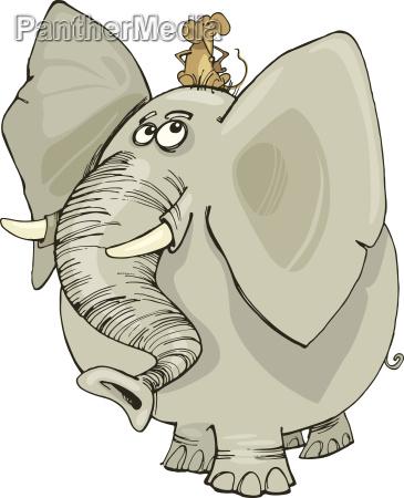 elefanten mit maus