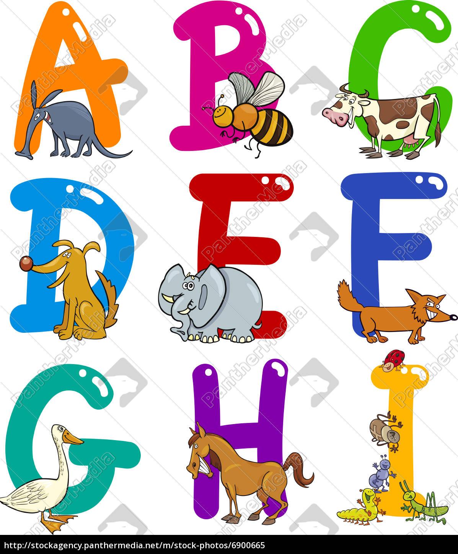 cartoon, alphabet, mit, tieren - 6900665