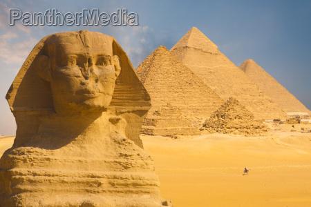 grosse sphinx gesicht pyramiden hintergrund