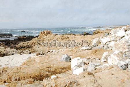 bird rock at pebble beach california