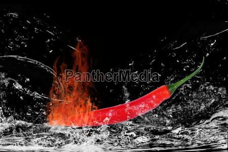 brennende chili wird geloescht