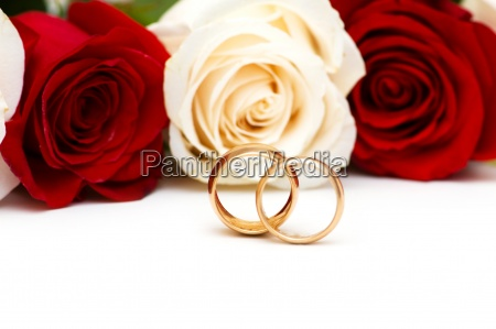 roses and wedding rings isolated on