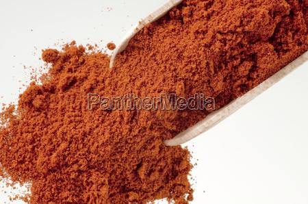 pfeffer paprika chilli chili rot roter