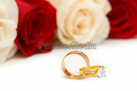 golden rings and roses isolated on
