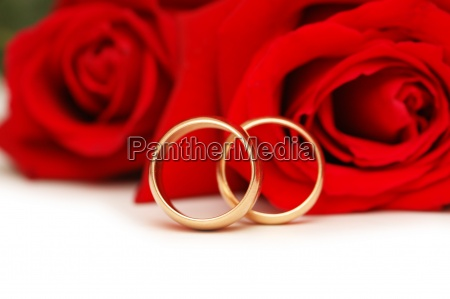 two wedding rings and red