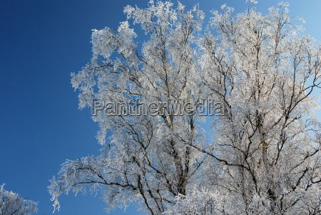 blau winter kalt kaelte schnee coke