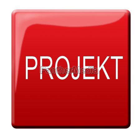 project button
