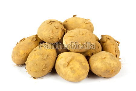 ein haufen schmutziger organischen neuen kartoffeln