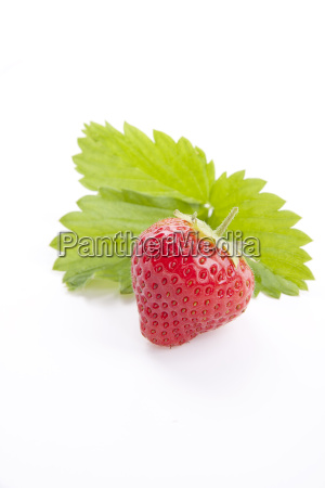 fresh strawberries with green leaves isolated