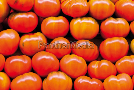 tomaten - 7851397