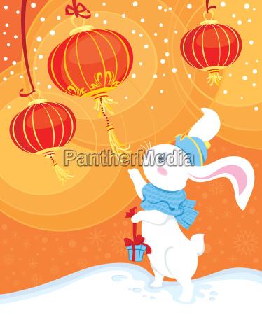 neugier weisses kaninchen und chinesische laternen