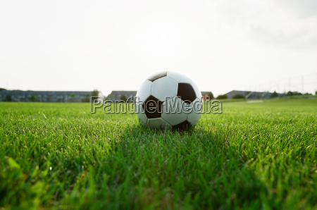 classic soccer ball in the grass