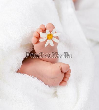 schoene kind fuss mit kleinen weissen