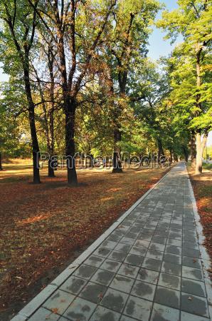 pfad im herbstpark