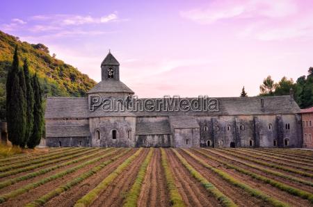 abbaye de senanque in der provence