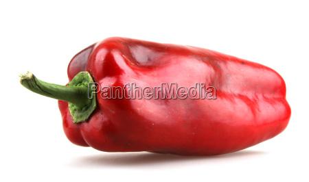 mexikanisch mexikaner chilli chili