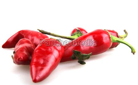 pfeffer gewuerz diaet paprika gewuerze wuerzen