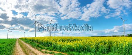 dramatischer wolkenhimmel mit rapsfeld und windkraft