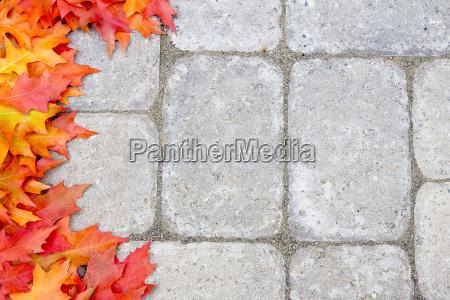 oak leaves border over stone bricks