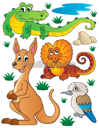 australian wildlife fauna set 2