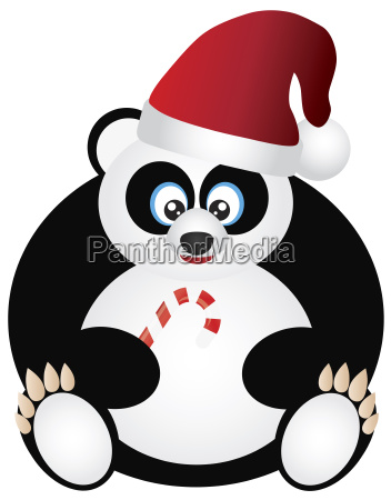 tier panda festlich weihnachtszeit christmas frech