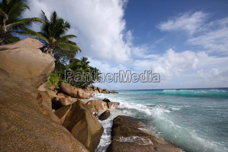 holiday vacation holidays vacations africa palms