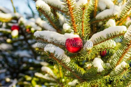 weihnachtskugeln auf baum