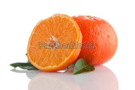frische orange mandarinen