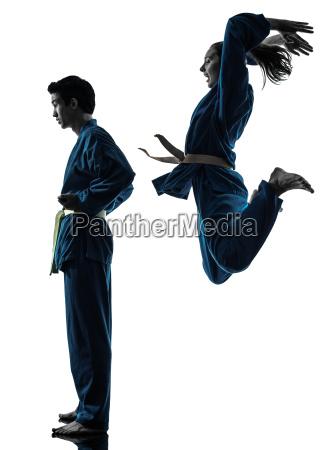 karate vietvodao kampf silhouette kunst mann