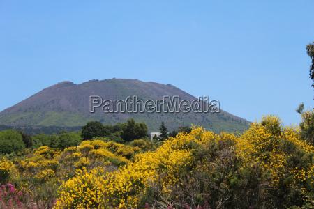 vesuvius the famous hill of