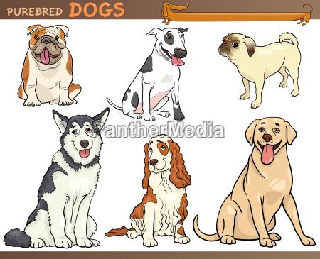 reinrassige hunde cartoon illustration set