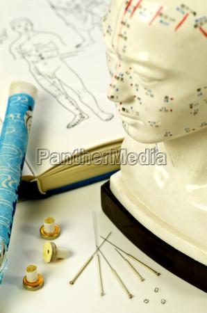 akupunkturnadeln mit lehrbuch kopfmodell und moxarolle