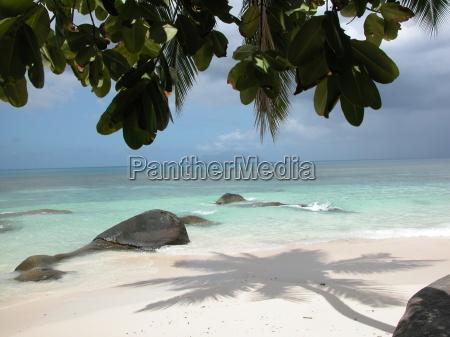 einsamer strand auf den seychelles