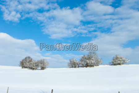 wintry landscape blue sky and white