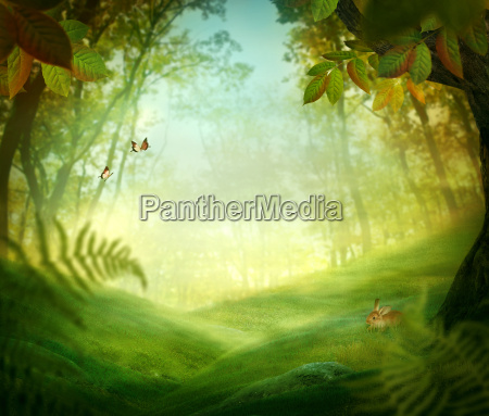 spring design forest meadow