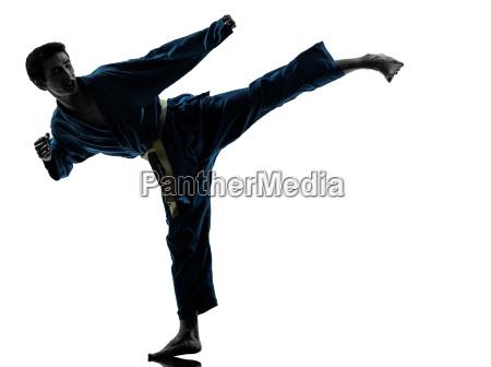 karate vietvodao kampfsportart man silhouette