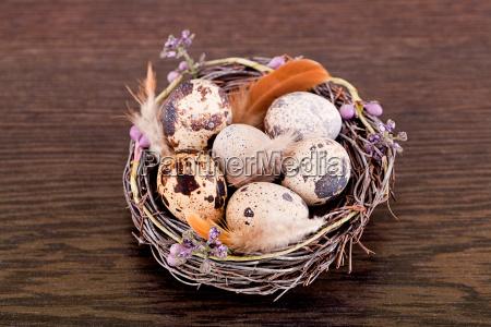 oster dekoration mit wachtel eiern und