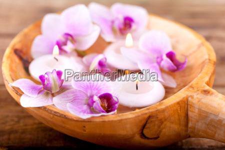 wellness uns spa konzept mit orchideen