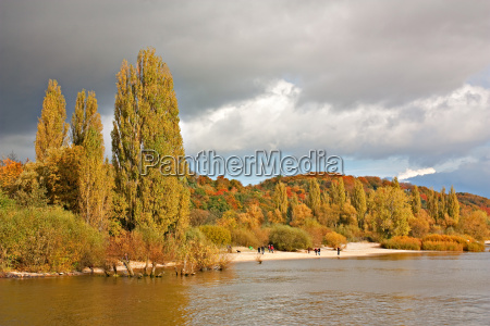 autumn on the elbe near hamburg