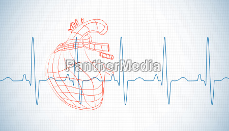 drawn human heart and heart rate