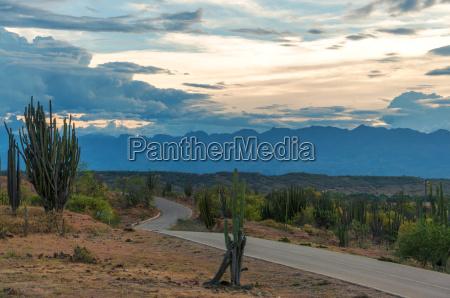 road winding through a desert