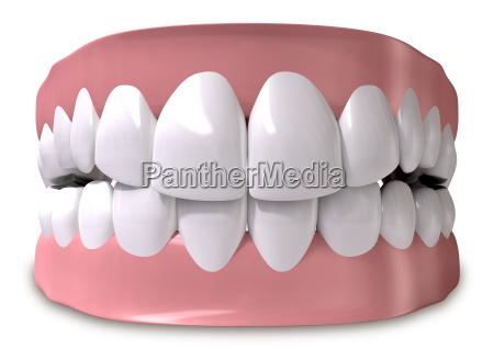 freisteller zaehne zahnarzt verschlossen abgeschieden zahn