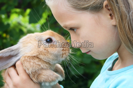 kaninchen - 8908450