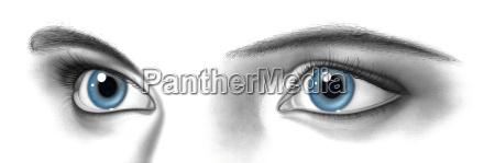 female pair of eyes