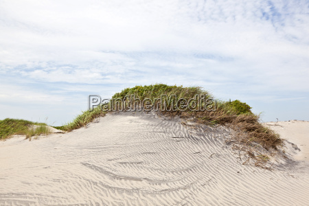 dune with grass at the