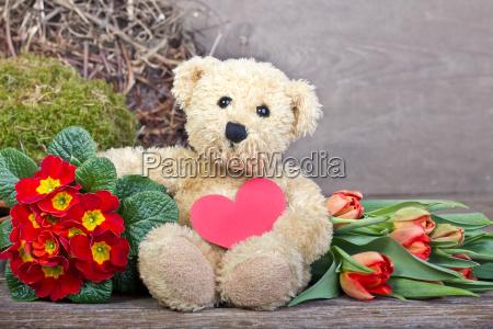 animal flower plant green bear brown