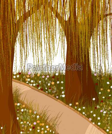 willow forest background