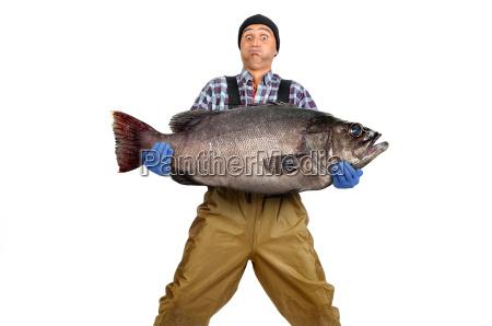 fischers fang