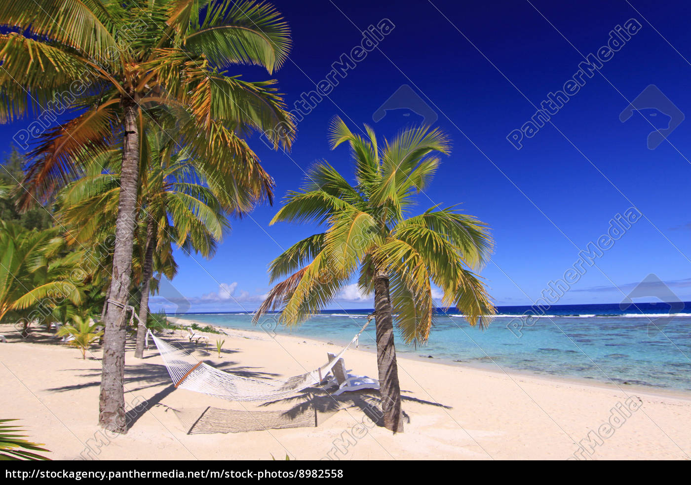 strand palme sandstrand palmen t rkis lagune riff stockfoto 8982558 bildagentur panthermedia. Black Bedroom Furniture Sets. Home Design Ideas