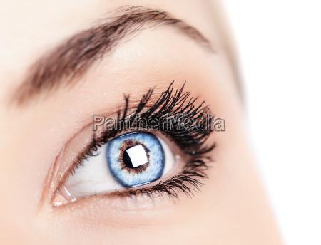 ojo azul femenino